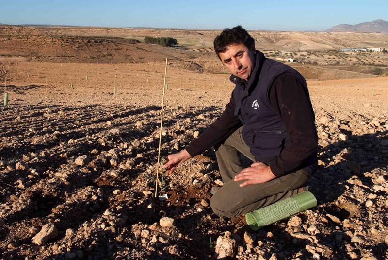 Huélago busca en la trufa un cultivo más rentable e innovador